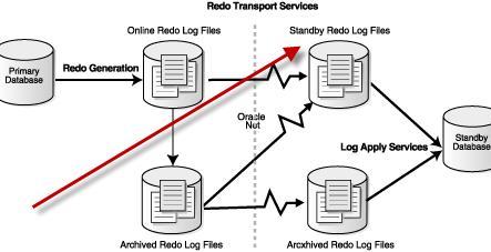 data guard switchover script
