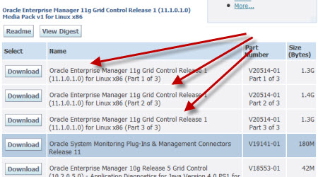 Oracle Enterprise Manager (OEM) Grid Control 11g is now