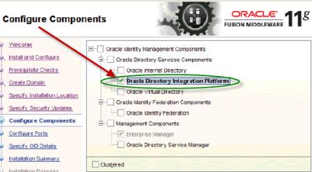 Oracle DIP