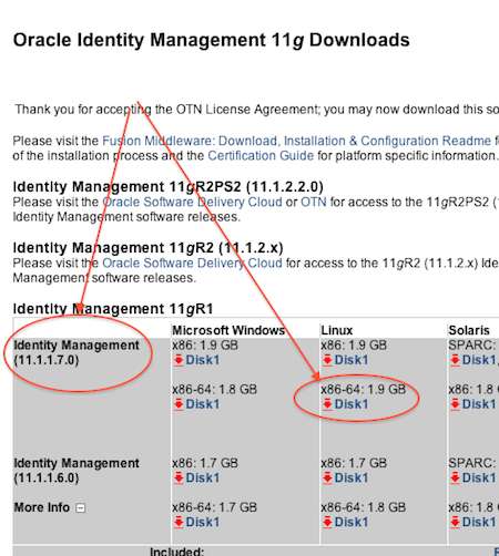 Installation of Oracle Identity Management (OID/OVD/ODSM/OIF) 11gR1