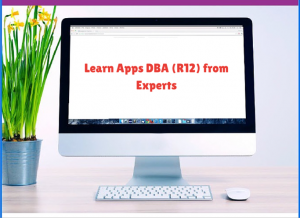 Learn Apps DBA (R12) from Experts